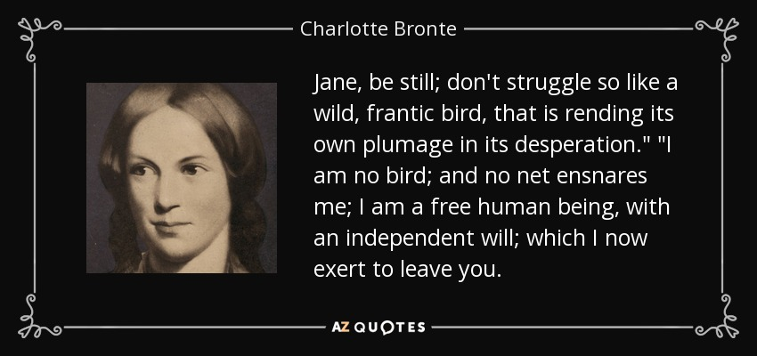 Jane, be still; don't struggle so like a wild, frantic bird, that is rending its own plumage in its desperation.