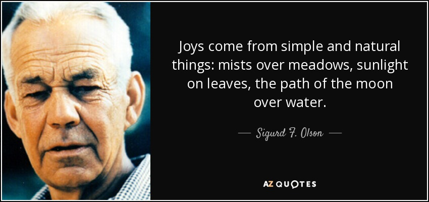 Joys come from simple and natural things: mists over meadows, sunlight on leaves, the path of the moon over water. - Sigurd F. Olson