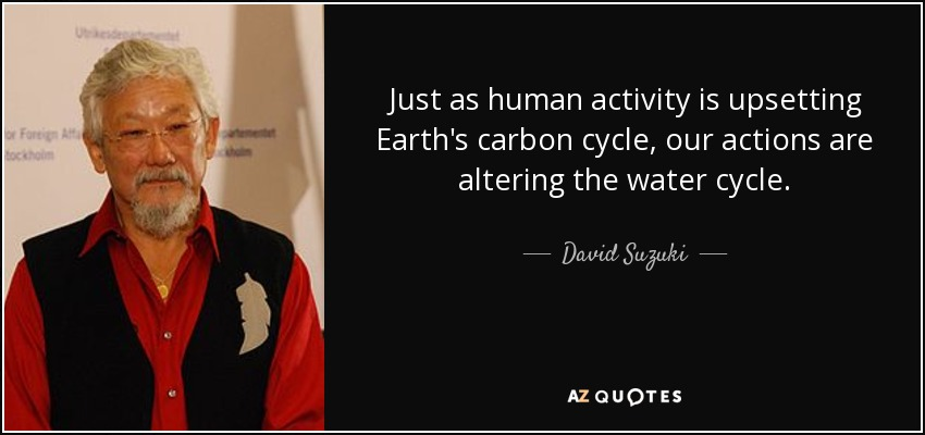 Just as human activity is upsetting Earth's carbon cycle, our actions are altering the water cycle. - David Suzuki