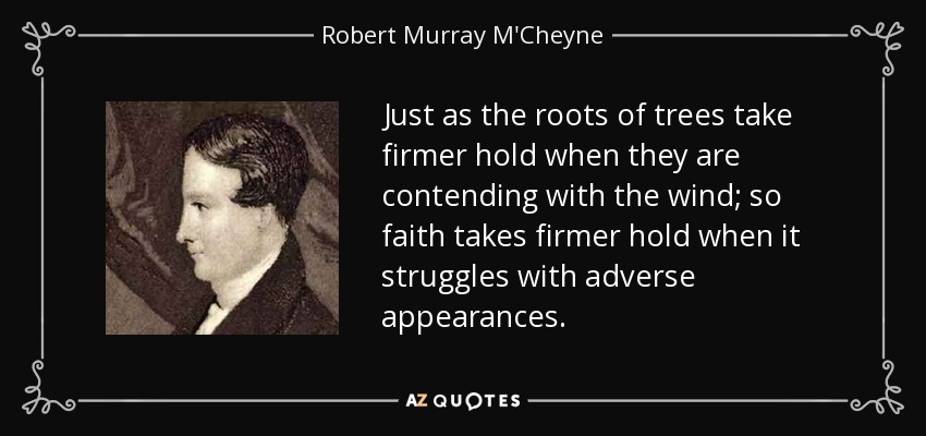 Just as the roots of trees take firmer hold when they are contending with the wind; so faith takes firmer hold when it struggles with adverse appearances. - Robert Murray M'Cheyne