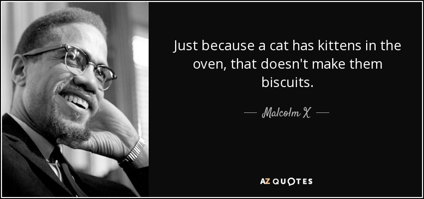 Just because a cat has kittens in the oven, that doesn't make them biscuits. - Malcolm X
