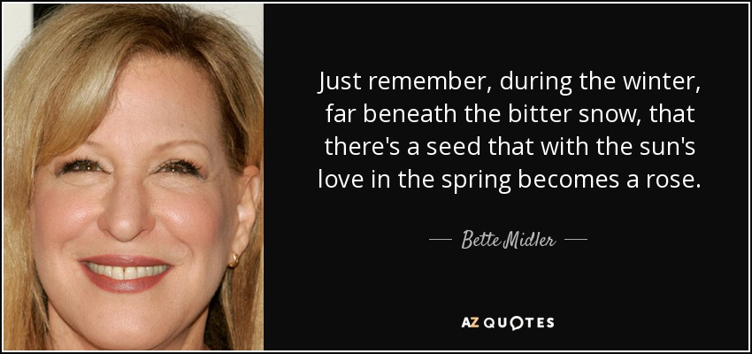 Just remember, during the winter, far beneath the bitter snow, that there's a seed that with the sun's love in the spring becomes a rose. - Bette Midler
