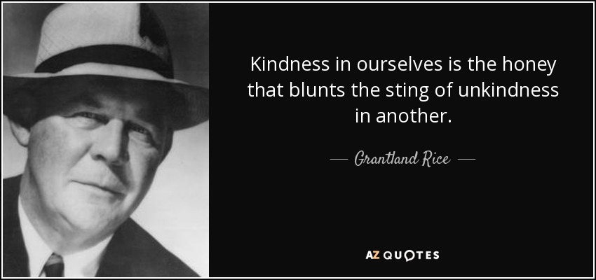 Kindness in ourselves is the honey that blunts the sting of unkindness in another. - Grantland Rice