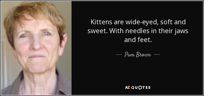 Kittens are wide-eyed, soft and sweet. With needles in their jaws and feet. - Pam Brown