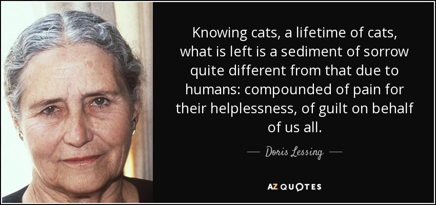 Knowing cats, a lifetime of cats, what is left is a sediment of sorrow quite different from that due to humans: compounded of pain for their helplessness, of guilt on behalf of us all. - Doris Lessing