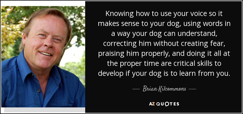 Knowing how to use your voice so it makes sense to your dog, using words in a way your dog can understand, correcting him without creating fear, praising him properly, and doing it all at the proper time are critical skills to develop if your dog is to learn from you. - Brian Kilcommons