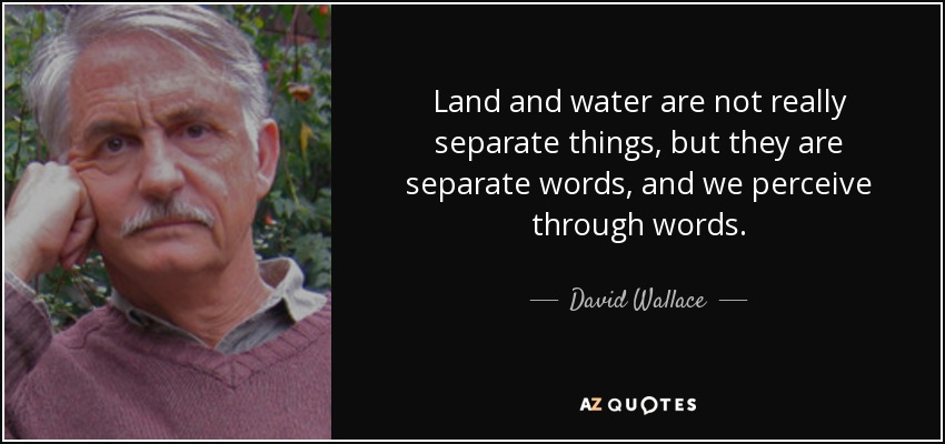 Land and water are not really separate things, but they are separate words, and we perceive through words. - David Wallace