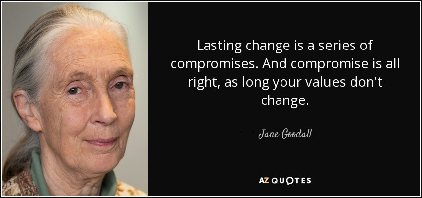 Lasting change is a series of compromises. And compromise is all right, as long your values don't change. - Jane Goodall