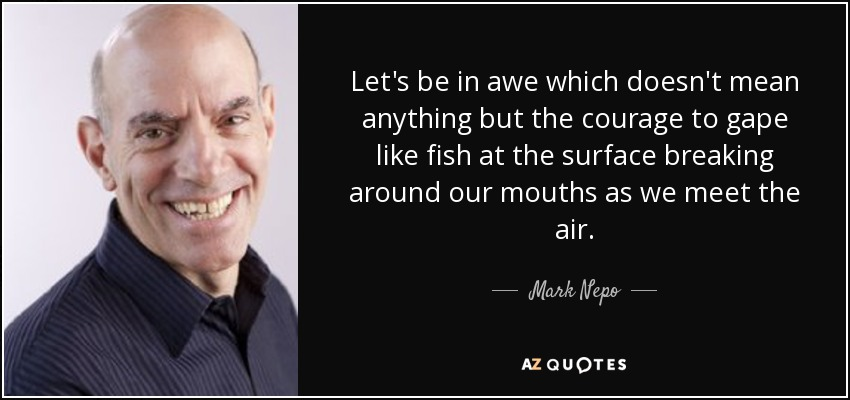 Let's be in awe which doesn't mean anything but the courage to gape like fish at the surface breaking around our mouths as we meet the air. - Mark Nepo