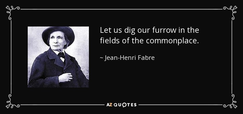 Let us dig our furrow in the fields of the commonplace. - Jean-Henri Fabre