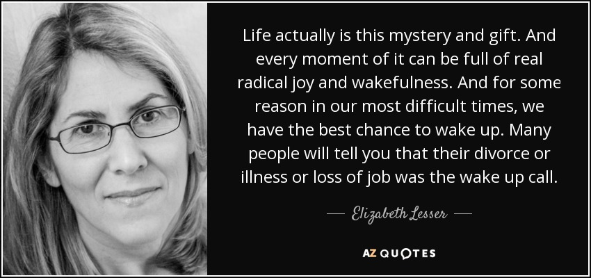 Life actually is this mystery and gift. And every moment of it can be full of real radical joy and wakefulness. And for some reason in our most difficult times, we have the best chance to wake up. Many people will tell you that their divorce or illness or loss of job was the wake up call. - Elizabeth Lesser
