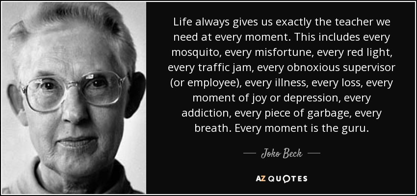 Life always gives us exactly the teacher we need at every moment. This includes every mosquito, every misfortune, every red light, every traffic jam, every obnoxious supervisor (or employee), every illness, every loss, every moment of joy or depression, every addiction, every piece of garbage, every breath. Every moment is the guru. - Joko Beck