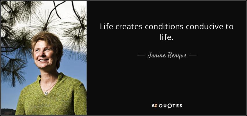 Life creates conditions conducive to life. - Janine Benyus