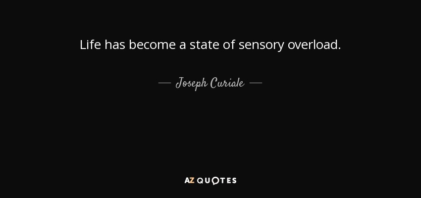 Life has become a state of sensory overload. - Joseph Curiale