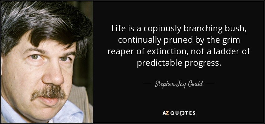 Life is a copiously branching bush, continually pruned by the grim reaper of extinction, not a ladder of predictable progress. - Stephen Jay Gould
