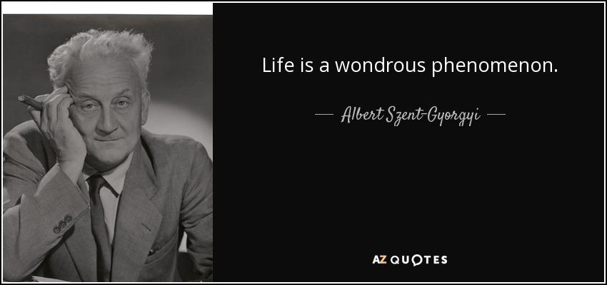 Life is a wondrous phenomenon. - Albert Szent-Gyorgyi