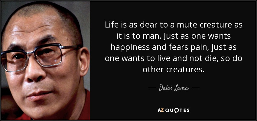 Dalai Lama quote: Life is as dear to a mute creature as it