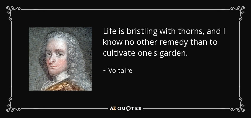 Life is bristling with thorns, and I know no other remedy than to cultivate one's garden. - Voltaire
