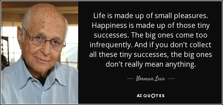 Life is made up of small pleasures. Happiness is made up of those tiny successes. The big ones come too infrequently. And if you don't collect all these tiny successes, the big ones don't really mean anything. - Norman Lear