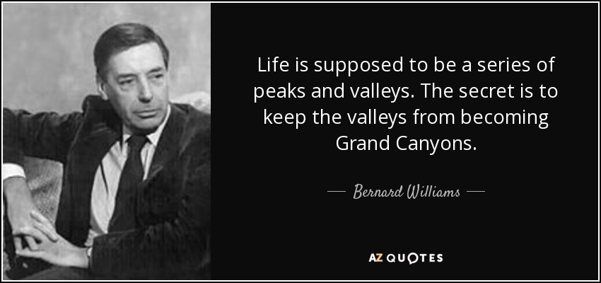Life is supposed to be a series of peaks and valleys. The secret is to keep the valleys from becoming Grand Canyons. - Bernard Williams