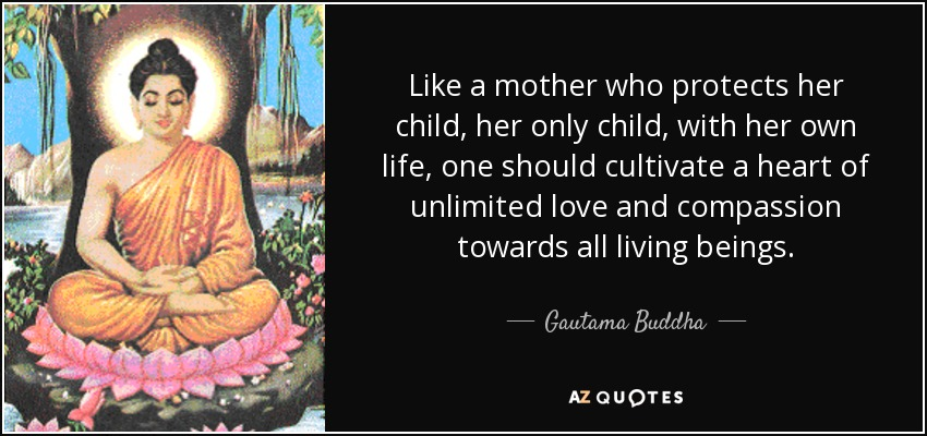 Like a mother who protects her child, her only child, with her own life, one should cultivate a heart of unlimited love and compassion towards all living beings. - Gautama Buddha