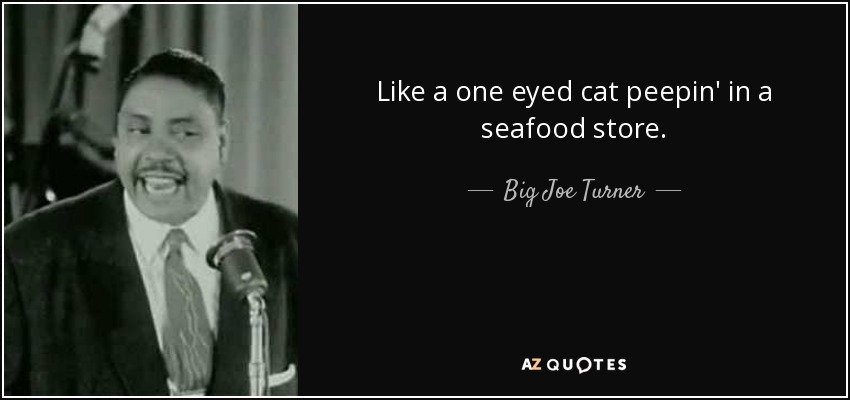 Like a one eyed cat peepin' in a seafood store. - Big Joe Turner
