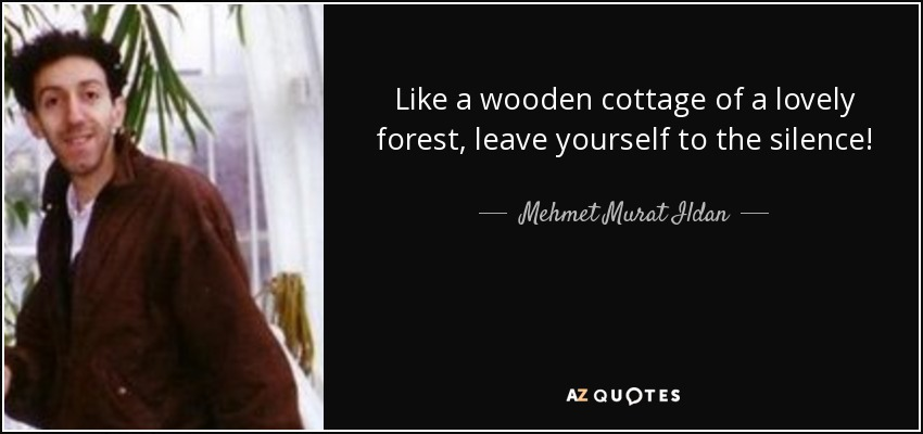 Like a wooden cottage of a lovely forest, leave yourself to the silence! - Mehmet Murat Ildan