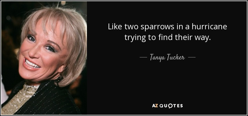 Like two sparrows in a hurricane trying to find their way. - Tanya Tucker