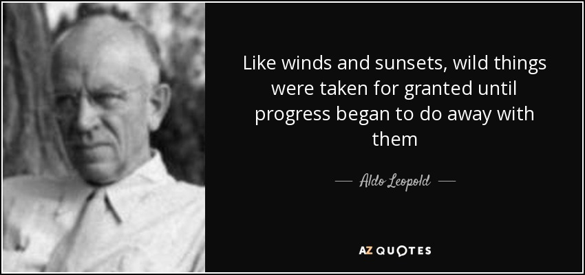 Like winds and sunsets, wild things were taken for granted until progress began to do away with them - Aldo Leopold