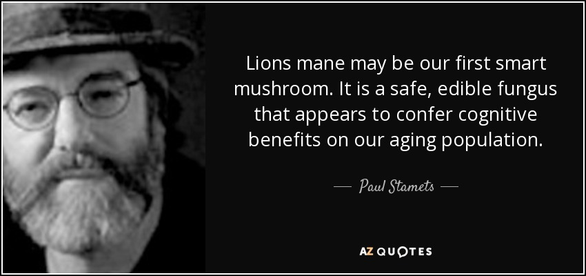 Lions mane may be our first smart mushroom. It is a safe, edible fungus that appears to confer cognitive benefits on our aging population. - Paul Stamets
