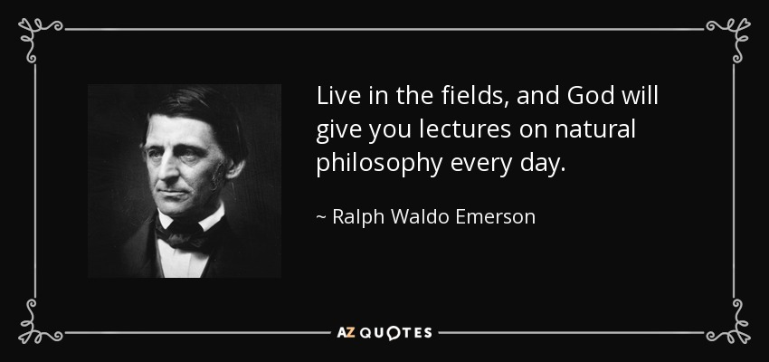 Live in the fields, and God will give you lectures on natural philosophy every day. - Ralph Waldo Emerson