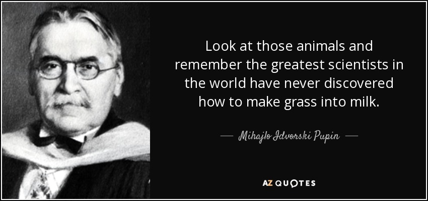 Look at those animals and remember the greatest scientists in the world have never discovered how to make grass into milk. - Mihajlo Idvorski Pupin
