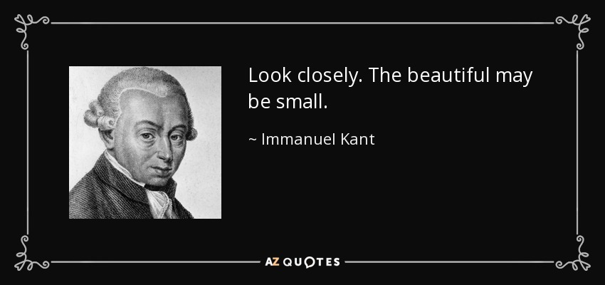Look closely. The beautiful may be small. - Immanuel Kant