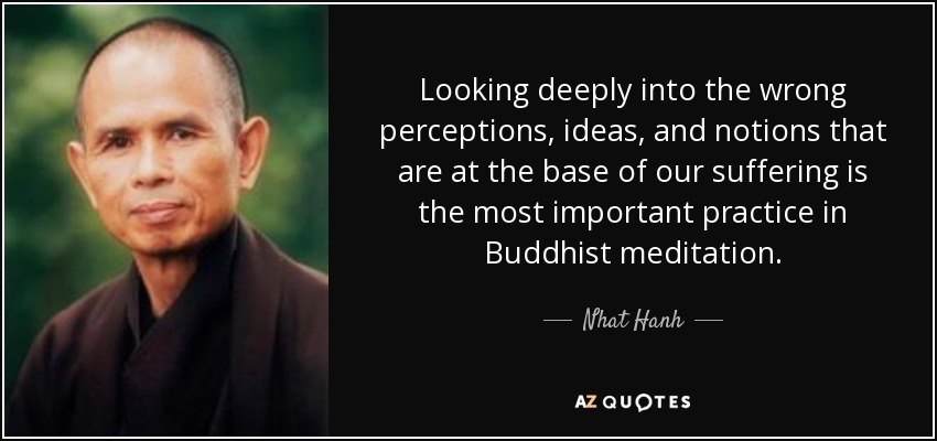 Looking deeply into the wrong perceptions, ideas, and notions that are at the base of our suffering is the most important practice in Buddhist meditation. - Nhat Hanh