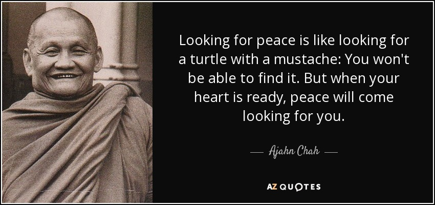 Looking for peace is like looking for a turtle with a mustache: You won't be able to find it. But when your heart is ready, peace will come looking for you. - Ajahn Chah