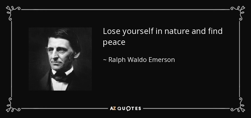 Lose yourself in nature and find peace - Ralph Waldo Emerson