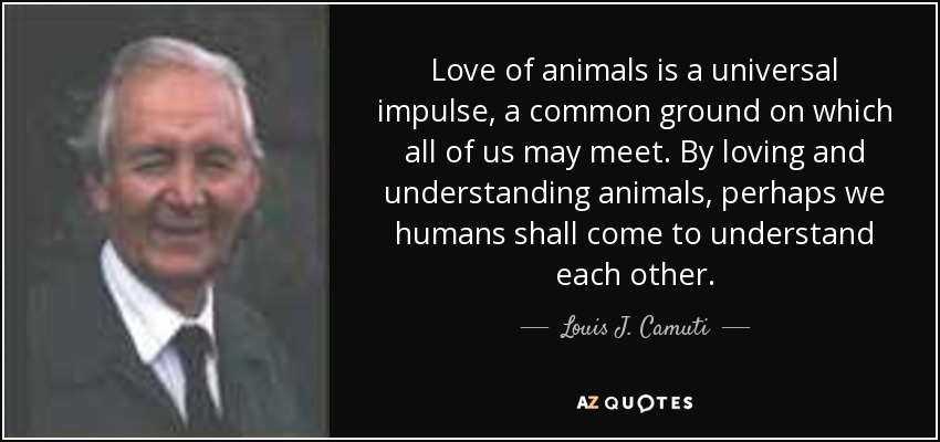 Love of animals is a universal impulse, a common ground on which all of us may meet. By loving and understanding animals, perhaps we humans shall come to understand each other. - Louis J. Camuti