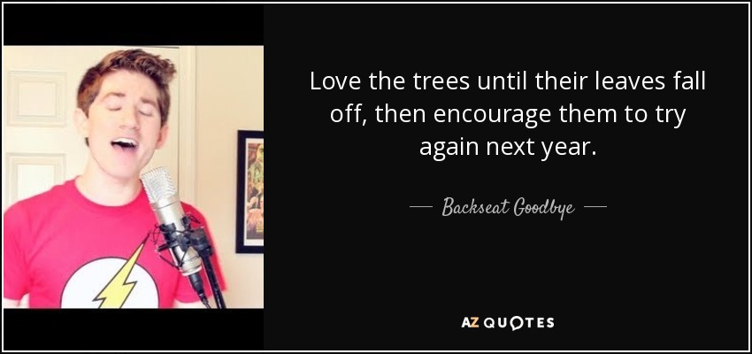 Love the trees until their leaves fall off, then encourage them to try again next year. - Backseat Goodbye
