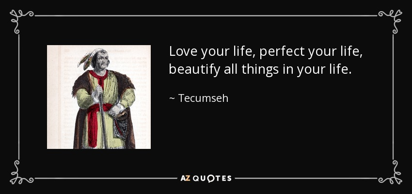 Love your life, perfect your life, beautify all things in your life. - Tecumseh