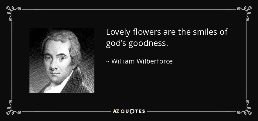Lovely flowers are the smiles of god's goodness. - William Wilberforce