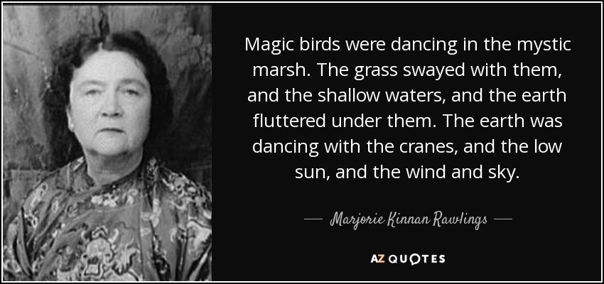 Magic birds were dancing in the mystic marsh. The grass swayed with them, and the shallow waters, and the earth fluttered under them. The earth was dancing with the cranes, and the low sun, and the wind and sky. - Marjorie Kinnan Rawlings