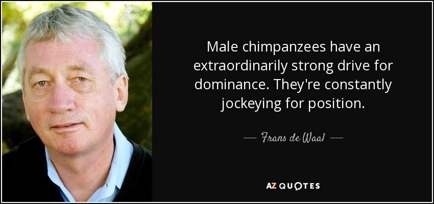 Male chimpanzees have an extraordinarily strong drive for dominance. They're constantly jockeying for position. - Frans de Waal
