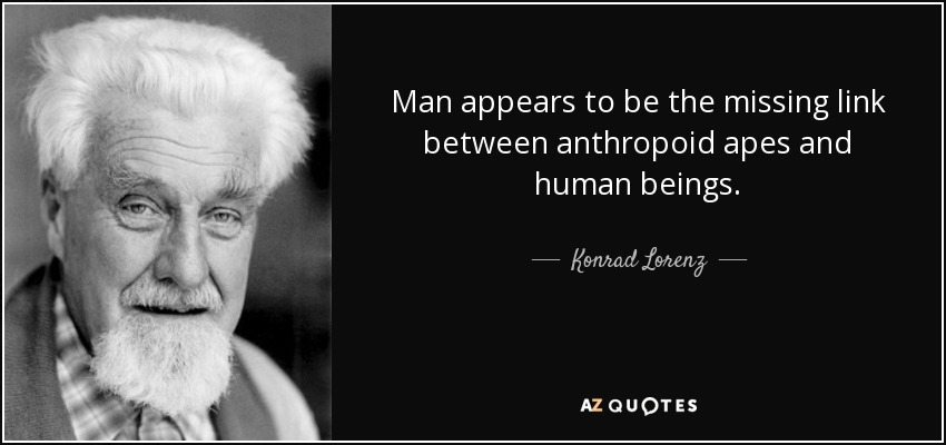 Man appears to be the missing link between anthropoid apes and human beings. - Konrad Lorenz
