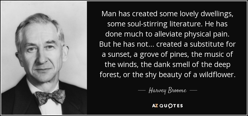 Man has created some lovely dwellings, some soul-stirring literature. He has done much to alleviate physical pain. But he has not ... created a substitute for a sunset, a grove of pines, the music of the winds, the dank smell of the deep forest, or the shy beauty of a wildflower. - Harvey Broome