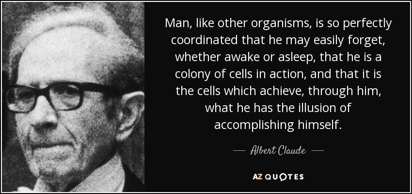 Man, like other organisms, is so perfectly coordinated that he may easily forget, whether awake or asleep, that he is a colony of cells in action, and that it is the cells which achieve, through him, what he has the illusion of accomplishing himself. - Albert Claude