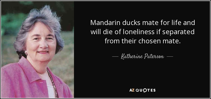 Mandarin ducks mate for life and will die of loneliness if separated from their chosen mate. - Katherine Paterson