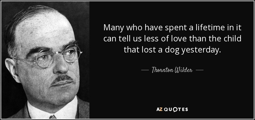 Many who have spent a lifetime in it can tell us less of love than the child that lost a dog yesterday. - Thornton Wilder