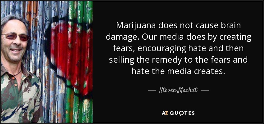 Marijuana does not cause brain damage. Our media does by creating fears, encouraging hate and then selling the remedy to the fears and hate the media creates. - Steven Machat