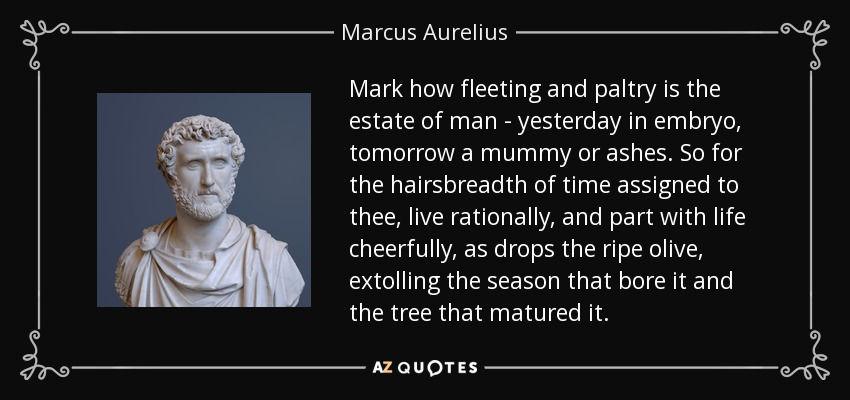 Mark how fleeting and paltry is the estate of man-yesterday in embryo, tomorrow a mummy or ashes. So for the hairsbreadth of time assigned to thee, live rationally, and part with life cheerfully, as drops the ripe olive, extolling the season that bore it and the tree that matured it. - Marcus Aurelius