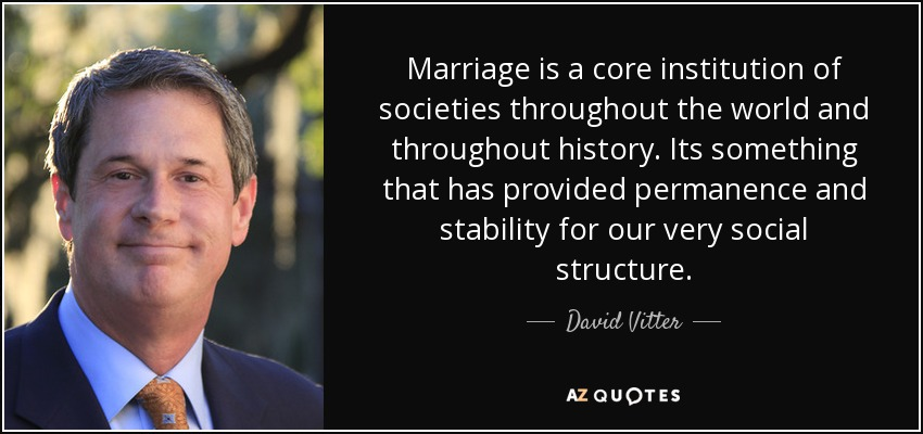 Marriage is a core institution of societies throughout the world and throughout history. Its something that has provided permanence and stability for our very social structure. - David Vitter